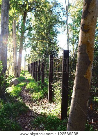 Rural Path And Girder Fence