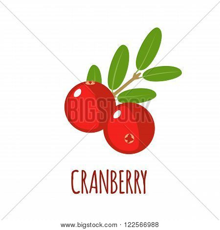 Cranberry in flat style. Cranberry vector logo. Cranberry icon. Isolated object. Natural food. Vector illustration. Cranberry on white background
