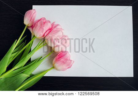 Tulip flowers and blank white paper card on wooden surface with copy space. Valentines day Mothers day greeting and holidays concept. For post blog social media.