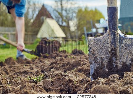 Shovel stiking into the earth with a young man digging the ground on the background
