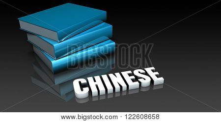 Chinese Class for School Education as Concept