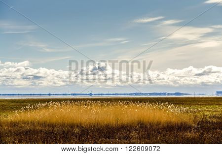 View across grassland to Morecambe Bay from Grange over Sands in Cumbria, England on sunny day.