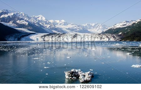 Harvard Glacier in College Fjord in Southcentral Alaska