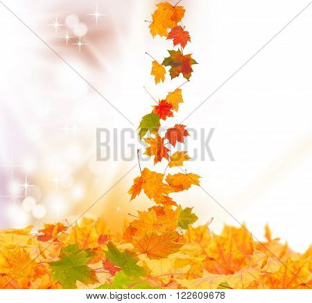 Autumn background, colorful fall leaves trickles down