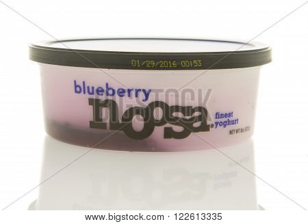 Winneconne WI - 26 Feb 2016: Container of Noosa yogurt in blueberry flavor.