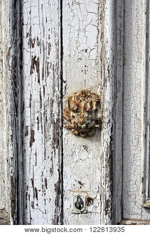 Old white door with rusty lion head insignia