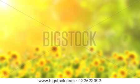 Sunny blurred background of green color with yellow sunflowers