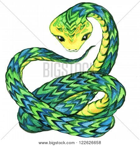 Snake. Snake watercolor drawing. Snake illustration. Cartoon Snake