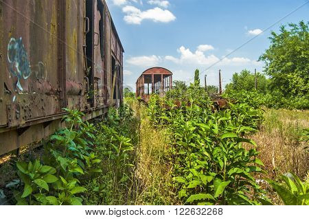Old railway wagons on the side track and in the grass.