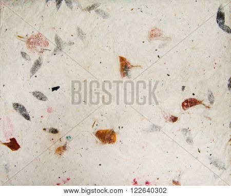 Handmade Asian Paper Texture With Leaves Herbarium
