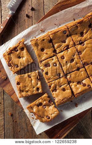 Homemade Chocolate Chip Blondies