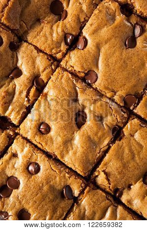 Homemade Chocolate Chip Blondies Cut Into Squares