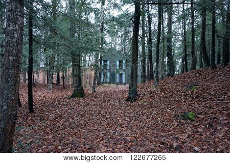 HARBOR SPRINGS, MICHIGAN / UNITED STATES - DECEMBER 23, 2015: A house in the woods along Glenn Drive in Harbor Springs, Michigan.