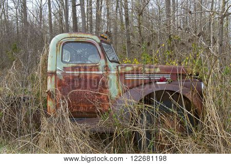 Cab of antique semi truck in field overgrown with weeds with flowers.