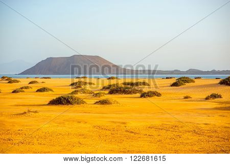 Corralejo dunes with Lobos island on the background on Fuerteventura island in Spain