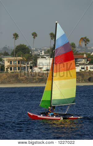 Sailing In Subtropical Bay