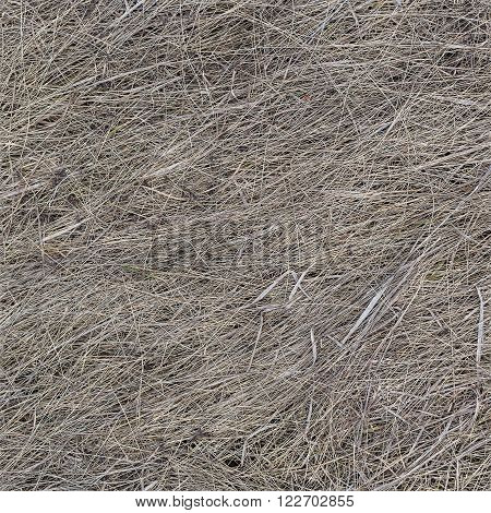 Dry old grass hey texture horizontal and vertical seamless background