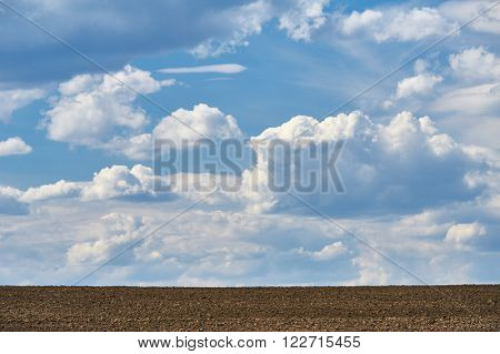 arable land and sky background