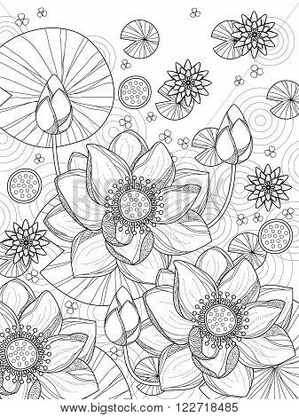 Attractive Lotus Coloring Page