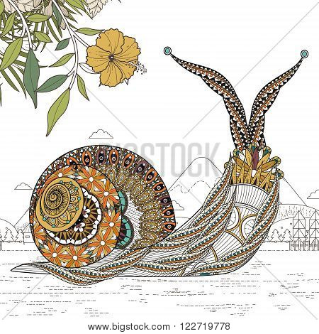 Elegant Snail Coloring Page