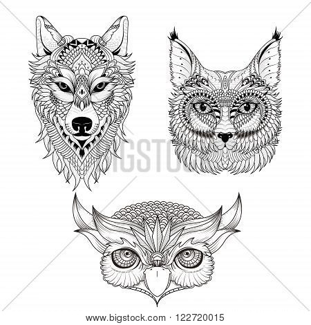 Attractive Animal Head Collection