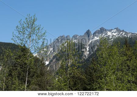 View of mountain peaks rising above Alaska's forests