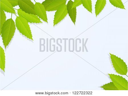 Nature background with tree leaves - vector illustration