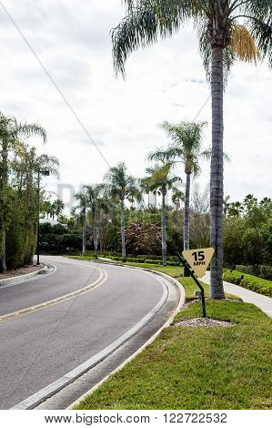 Speed Limit Sign on Curving Road Through Tropics in Florida
