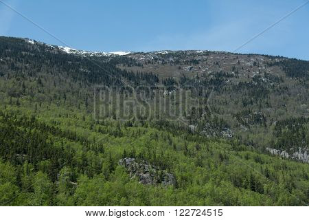 Forests line the hills near Skagway, Alaska