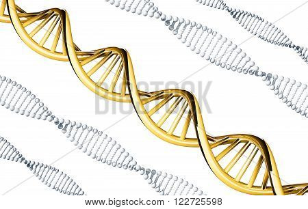 Golden DNA with silver DNA, dominant gene, isolated on white background, 3d rendered