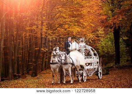 Young wedding romantic couple of bride in white dress and bridegroom in suit in carriage with horses in autumn deep orange forest outdoor on natural background horizontal picture