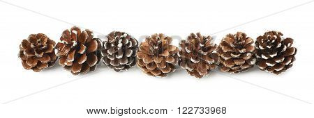 Decorational pine cones covered with the artificial snow and arranged in a row line, composition isolated over the white background