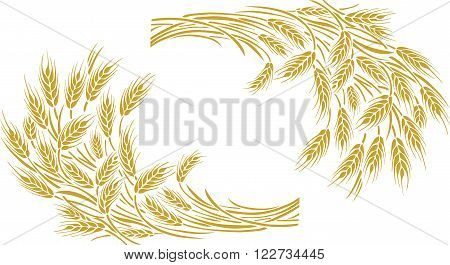Vector illustration of a few ripe wheat ears. Can be used as frame corner or border design element.