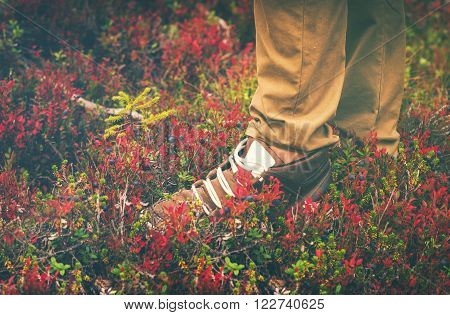 Feet Man Sneakers shoes walking Outdoor Travel Lifestyle Fashion trendy style forest nature on background