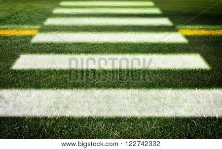 Pedestrian crossing on grass - concept image