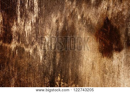 Old rotten brown moldy wood texture background