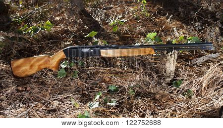 Rimfire rifle for twenty two ammo that is in the forst
