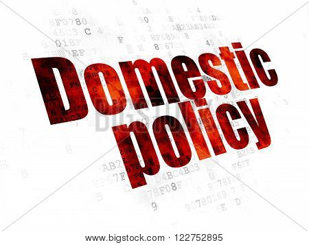 Politics concept: Domestic Policy on Digital background