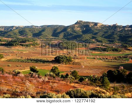 Terra Alta county landscape in spring, with flowery almond trees, olive trees and other cultures, and the Serra de Pandols mountain range in the background (Gandesa, Tarragona, Catalonia, Spain).