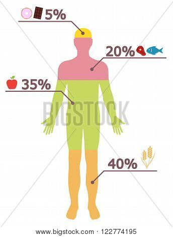 Info graphic design. Healthy lifestyle. Food rationing. Vector illustration