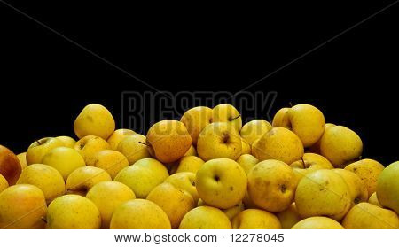 Golden apples for sale