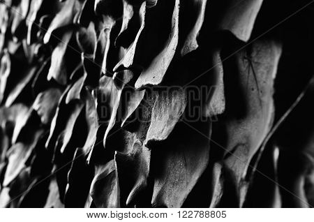 BARCELONA - FEBRUARY 24: Detail of the door of the cathedral Sagrada Familia designed by Catalan architect Antoni Gaudi on February 24 2016 in Barcelona Spain