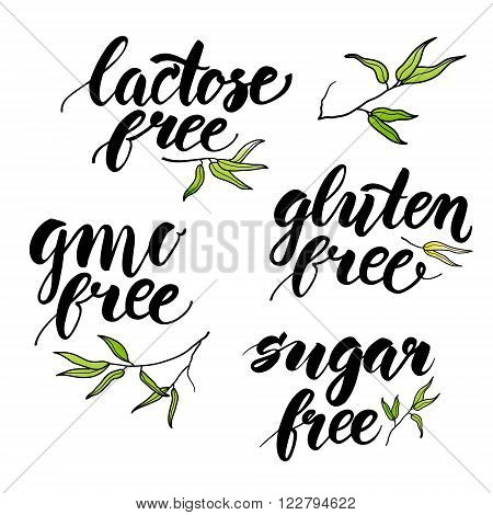 Modern brush calligraphy. Handwritten words - lactose free gluten free gmo free sugar free. Ink hand lettering. Hand drawn bamboo leaves