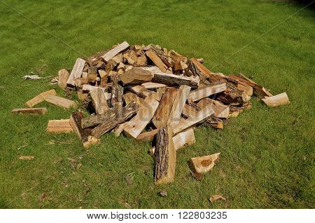 Pile of chopped and split firewood strewn on the grass