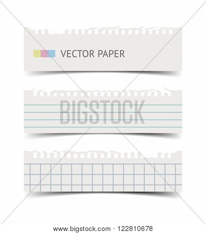 Old fashion notebook paper sheets with soft shadow and ripper edges isolated on white background. Realistic vintage retro vector illustration of squared and lined paper pieces, torn paper