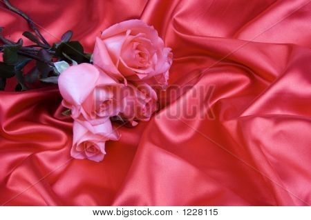 Rose With Silk