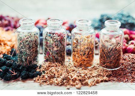 Bottles of healing herbs herbal medicine. Retro styled photo.