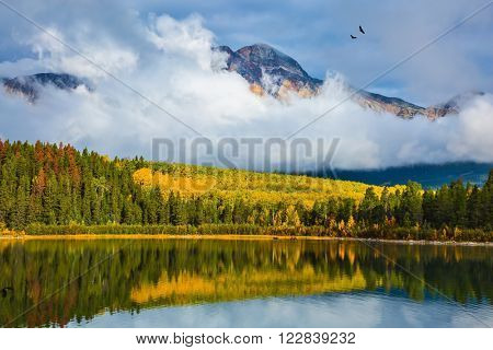 Charming Patricia Lake amongst the evergreen forests, yellow bushes and distant mountains. Warm autumn in the Rocky Mountains of Canada