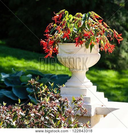 A large cement pedestal planter with begonias in a park like setting.