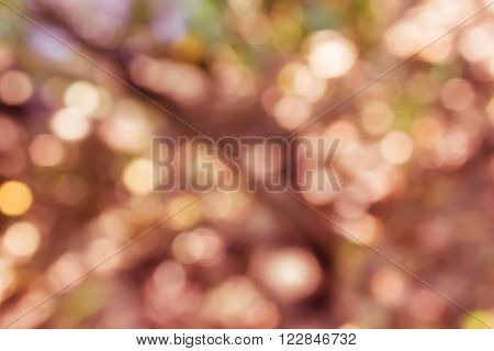 Colourful spark and blow natural bokeh  in wonderful fantasy mood abstract background